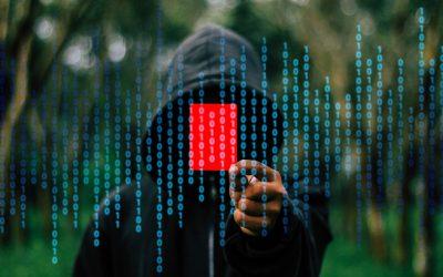 Mieux connaître les pirates informatiques (ou hackers)